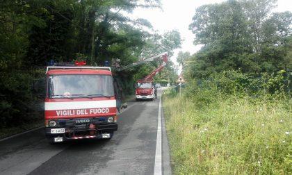 Allerta per temporali forti in Valtellina e Valchiavenna