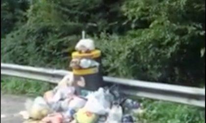 Rifiuti sulla Superstrada 36: al via pulizia e multe