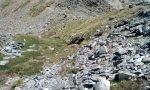 Scarica di sassi in quota, un morto sul Gavia
