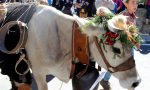 Dopo la Sagra di Vetto salta anche la Festa dell'Alpeggio