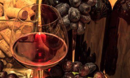Chiavenna, Valtellina Wine Festival 2017