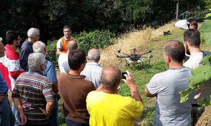 Arrivano i droni in vigna