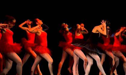 Performing Danza: al via i Laboratori Creativi 2017/2018