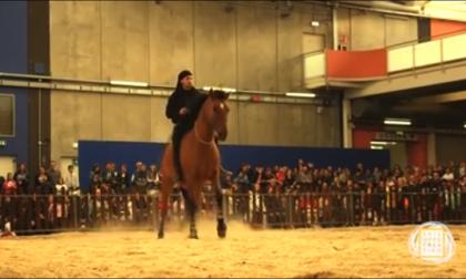 Amazzone di 24 anni cade da cavallo e finisce in ospedale