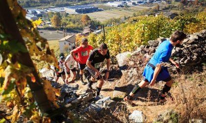 Presentata l'edizione 2018 di Valtellina Wine Trail