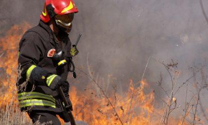 Incendi boschivi, stop all'allerta grazie alla pioggia