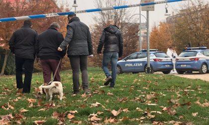 Valtellinese sgozzata mentre porta a passeggio il cane