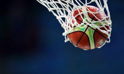 Cerca un po' di fortuna sotto l'albero la Pezzini Basket