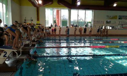 Futura subito vincente nella prima prova del circuito Csi di nuoto