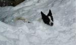 Neve in arrivo, che sia la volta buona?