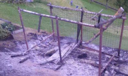 Cani bruciati vivi, c'è una taglia sulla testa del colpevole