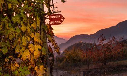 Da Sindelfingen in Valtellina per il Wine Trail