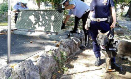 Un cane poliziotto fascista scatena la bagarre in Consiglio comunale
