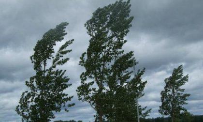Torna il vento forte sul Lario: scatta il codice giallo della Protezione Civile