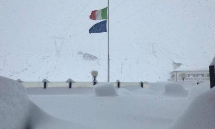 Un metro di neve allo Stelvio, lo spettacolo dell'inverno in Valtellina FOTO