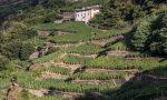 Terrazzamenti e muretti a secco: Regione investe sulla montagna