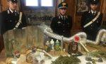 Aveva in cantina una fabbrica di droga, arrestato 26enne