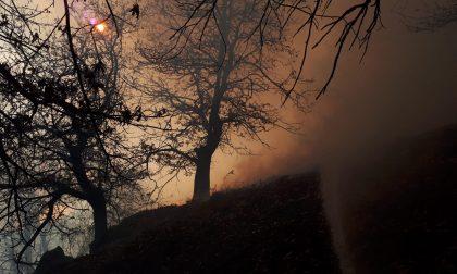"""Cresce l'allerta incendi, la Protezione Civile: """"vietate i fuochi"""""""