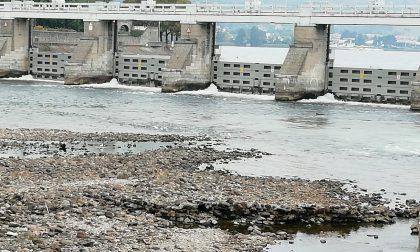 """Il Lago basso preoccupa: politici """"dei due rami"""" in campo per il bene del Lario"""