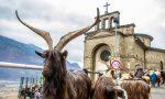 Festa di Sant'Antonio, animali e padroni in piazza per ricevere la benedizione VIDEO