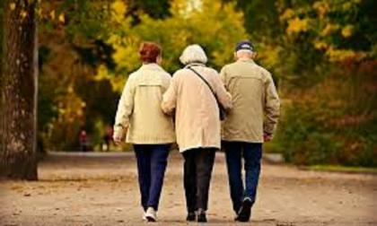 Incredibile: anziani multati per la passeggiata nei prati