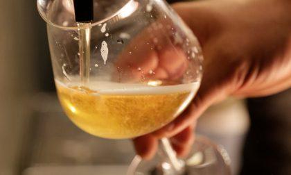 Vuoi imparare a degustare la birra? A Sondrio arriva un corso