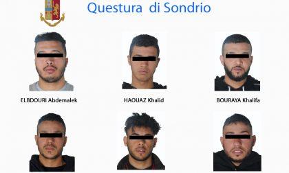 Droga nei boschi della Bassa Valtellina, altri sei arresti