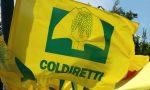 """Coldiretti Sondrio: """"Agricoltura pronta  a garantire i rifornimenti alimentari"""""""