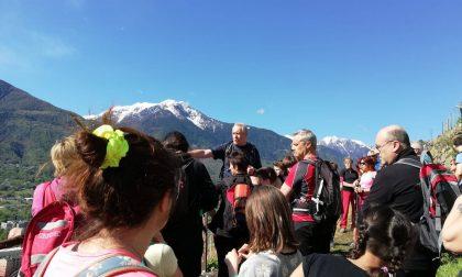 Alla scoperta del Monte Rolla