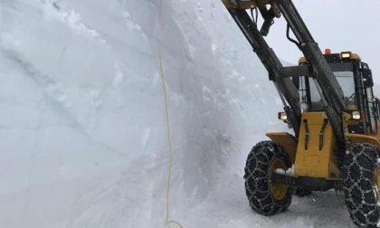 In provincia di Sondrio è arrivata  la neve, anche l'agricoltura si mobilita
