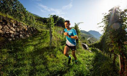 Il Valtellina Wine Trail si mostra più forte di sempre