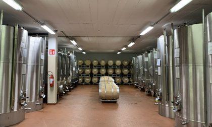 """Prodotto igienizzante a base di alcool """"made in Valtellina"""""""
