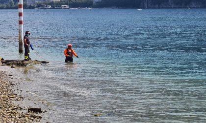 Continuano le ricerche della ragazzina dispersa nel Lago