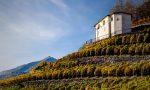 """Al via la seconda edizione di """"Mangiar per vigne in Valtellina"""""""