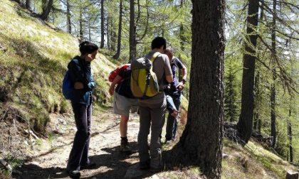 """Parco delle Orobie: sabato e domenica torna """"Bioblitz Lombardia"""""""