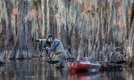 Andrea Pozziè il fotografo dell'anno per il concorso BBC Wildlife