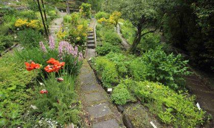 Gli orti botanici lombardi lavorano insieme
