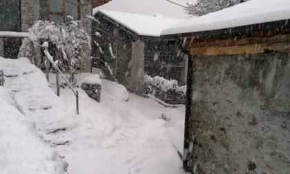 La neve a bassa quota è uno spettacolo FOTO