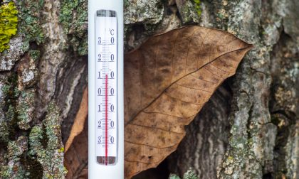 Arriva il Favonio (Fohn), su le temperature | Previsioni meteo Lombardia