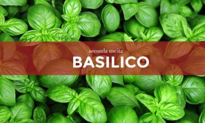 Tutti ortisti: domani in regalo con Centro Valle i semi di basilico