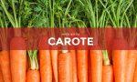 In regalo con Centro Valle ci sono i semi di carota