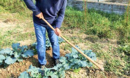 Coltivare Valore, per un'agricoltura sostenibile e sociale