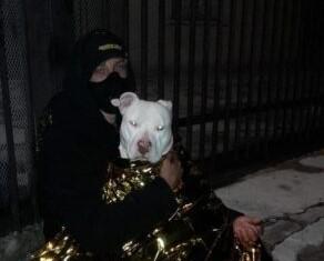 Disperso e con il telefono scarico, recuperato nella notte un ragazzo ed il suo cane