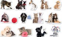 Originali stickers in regalo con Centro Valle