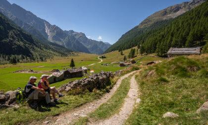 Scopri la Val di Rezzalo e raggiungila con il bus...