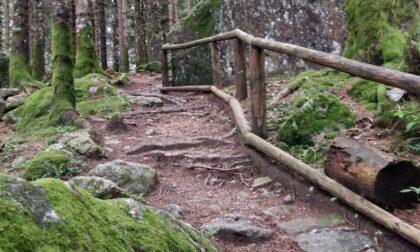 """""""Sentiero dei borghi"""": 22 chilometri nel verde"""
