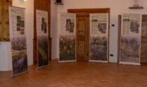 """B-Ice & Heritage: Caspoggio la mostra """"Lombardia, un tesoro di biodiversità"""""""