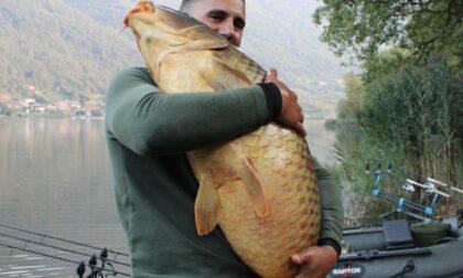 """Pescato un """"mostro"""" nel lago di Endine"""